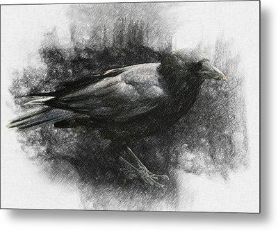Raven Metal Print by Taylan Soyturk