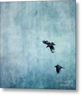 Ravens Flight Metal Print by Priska Wettstein