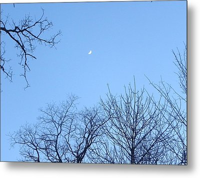 Reaching For The Moon Metal Print by Cim Paddock