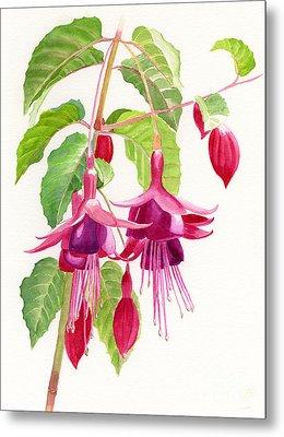 Red And Purple Fuchsias Metal Print by Sharon Freeman
