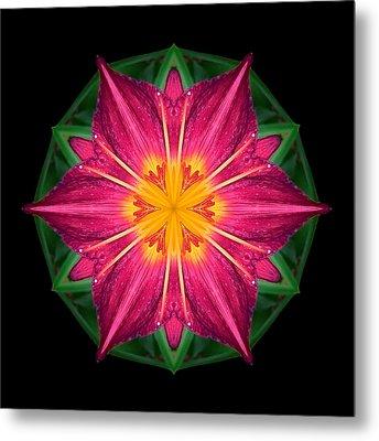 Red And Yellow Daylily I Flower Mandala Metal Print by David J Bookbinder