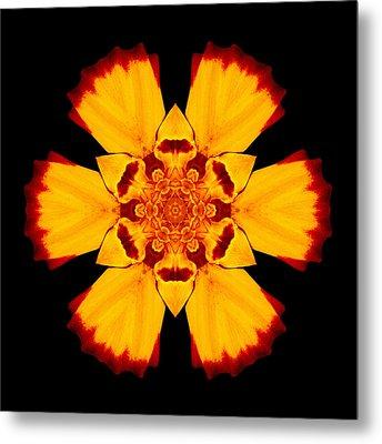 Red And Yellow Marigold II Flower Mandala Metal Print by David J Bookbinder