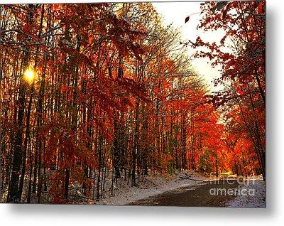 Red Autumn Road In Snow Metal Print by Terri Gostola
