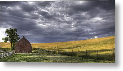 Red Barn With Lamas Metal Print by Latah Trail Foundation