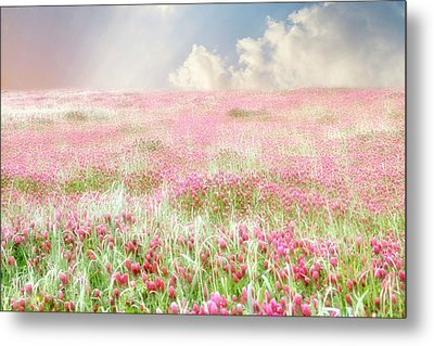 A Perfect World Metal Print by Amy Tyler