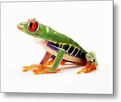 Red-eye Tree Frog 4 Metal Print by Lanjee Chee
