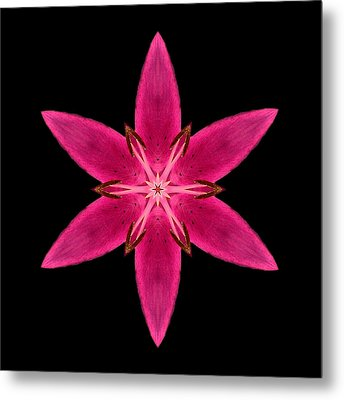 Red Lily I Flower Mandala Metal Print by David J Bookbinder