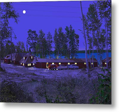 Red Pines Metal Print by Mark Didine