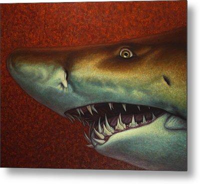 Red Sea Shark Metal Print by James W Johnson
