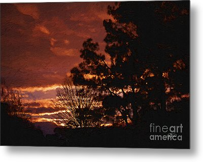 Red Sky At Night Metal Print by Cris Hayes