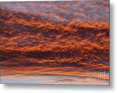 Red Sky Metal Print by Michal Boubin