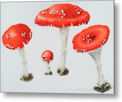 Red Toadstools Fly Agaric  Metal Print by Sally Crosthwaite