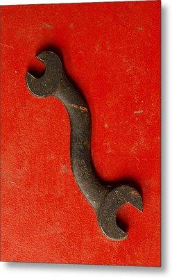 Red  Metal Print by Tom Druin
