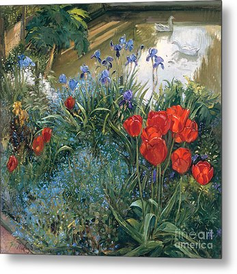 Red Tulips And Geese  Metal Print by Timothy Easton