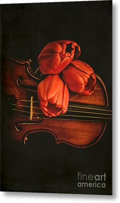 Red Tulips On A Violin Metal Print by Edward Fielding