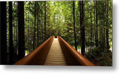 Redwood Bridge Metal Print by Chad Dutson