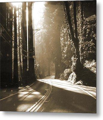 Redwood Drive Metal Print by Mike McGlothlen