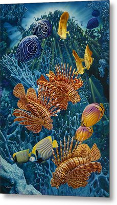 Reef Two Metal Print by Larry Taugher