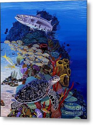 Reefs Edge Re0025 Metal Print by Carey Chen