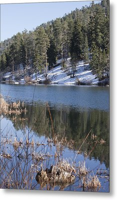 Reflection Metal Print by Ivete Basso Photography