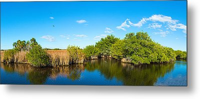 Reflection Of Trees In A Lake, Big Metal Print by Panoramic Images