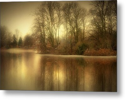 Reflections From The Lake Metal Print by Jennifer Woodward