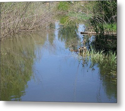 Reflections In The Pond Metal Print by Jewel Hengen