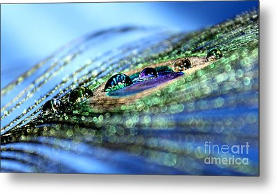 Reflections Of Color Metal Print by Krissy Katsimbras