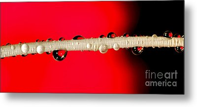 Refractions Of A Red Rose Metal Print by Kaye Menner
