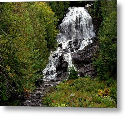 Refreshing Metal Print by Tammy Collins