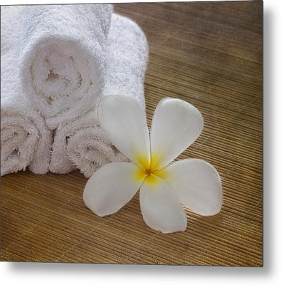 Relax At The Spa Metal Print by Kim Hojnacki