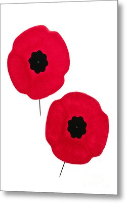 Remembrance Day Poppies Metal Print by Elena Elisseeva