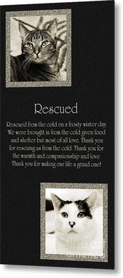 Rescued Metal Print by Andee Design