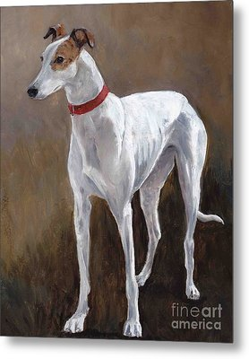 Rescued Racer Metal Print by Charlotte Yealey