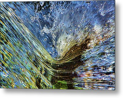Resistance Is Futile Metal Print by Gary Holmes