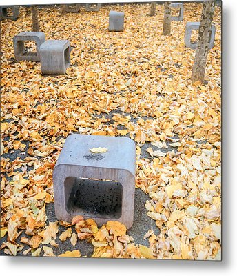 rest in fall IV Metal Print by Hannes Cmarits