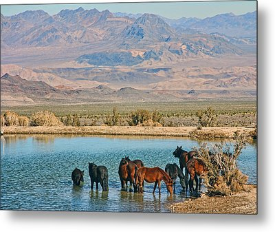 Rest Stop Metal Print by Tammy Espino