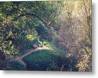 Rest Your Soul Metal Print by Laurie Search