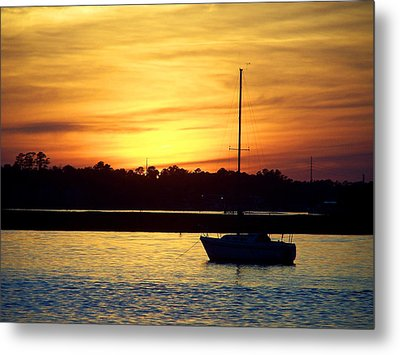 Resting In A Mango Sunset Metal Print by Sandi OReilly