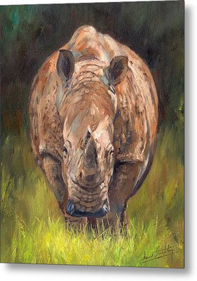 Rhino Metal Print by David Stribbling