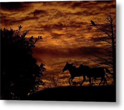 Riding Into The Night Metal Print by Diane Schuster