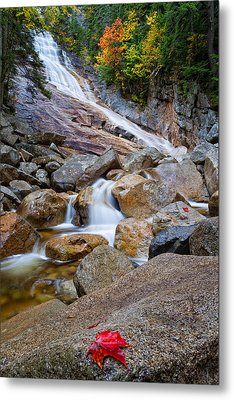 Ripley Falls And Red Maple Leaf Metal Print by Jeff Sinon