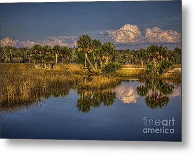 Rising Tide Metal Print by Marvin Spates