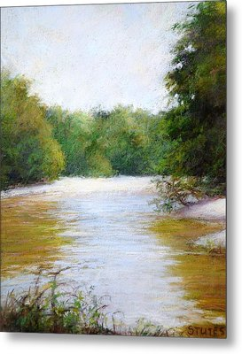 River And Trees Metal Print by Nancy Stutes