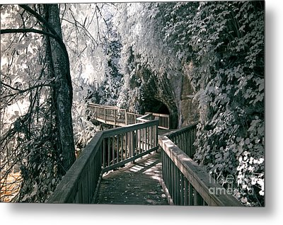River Boardwalk Metal Print by Paul W Faust -  Impressions of Light