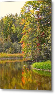 River In Fall Metal Print by Rhonda Humphreys