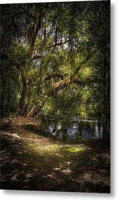 River Oak Metal Print by Marvin Spates
