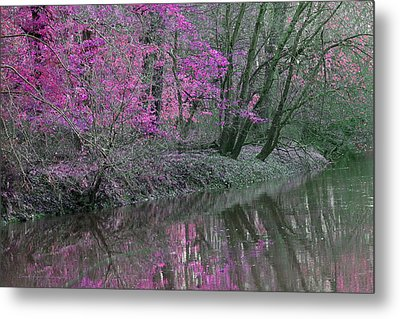 River Of Pastel Metal Print by Lorna Rogers Photography