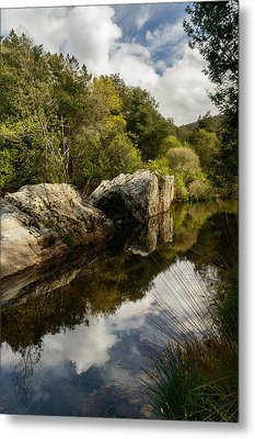 River Reflections II Metal Print by Marco Oliveira
