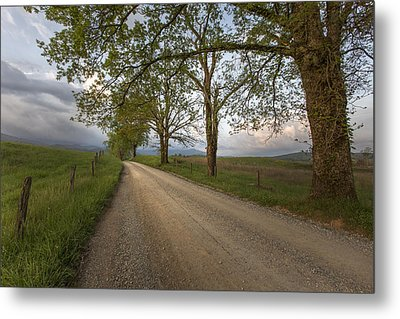 Road Not Traveled II Metal Print by Jon Glaser